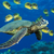 Thumb_green_sea_turtle